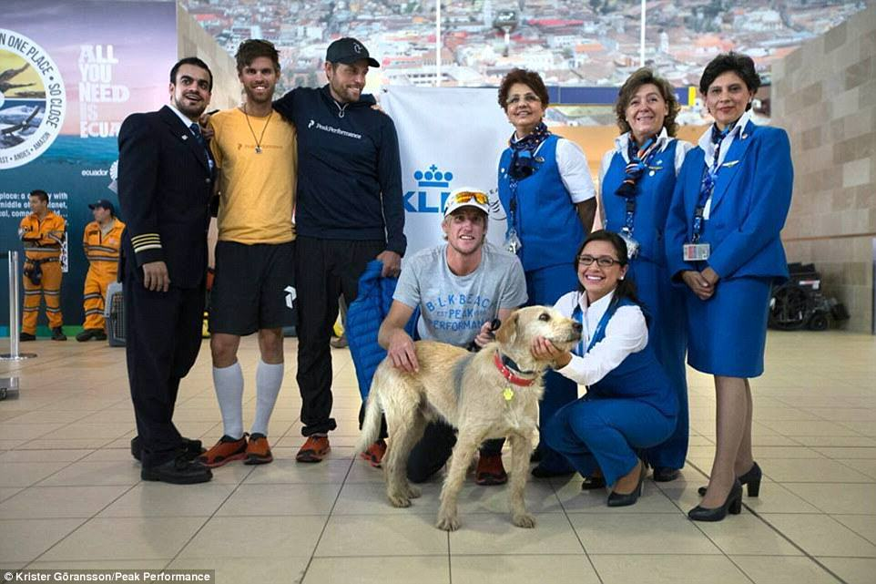 236A163B00000578 0 image 26 1416753542271 Stray Dog Completes 400 Mile Race With Extreme Sports Team, Finds New Home