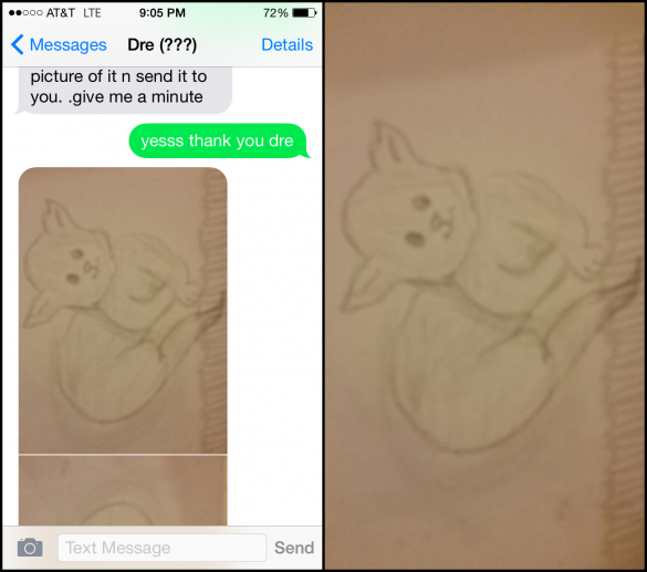 31 Lad Gets Trolled Into Swapping Animal Sketches For Nudes