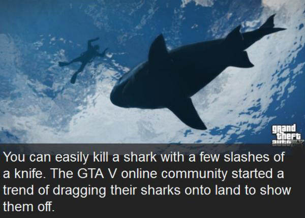 gta5 Interesting Things People Discovered Playing Grand Theft Auto V