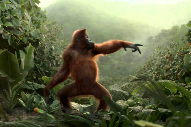 monkey111 640x426 Dancing Monkey Has Better Moves Than You, Guaranteed To Brighten Your Day