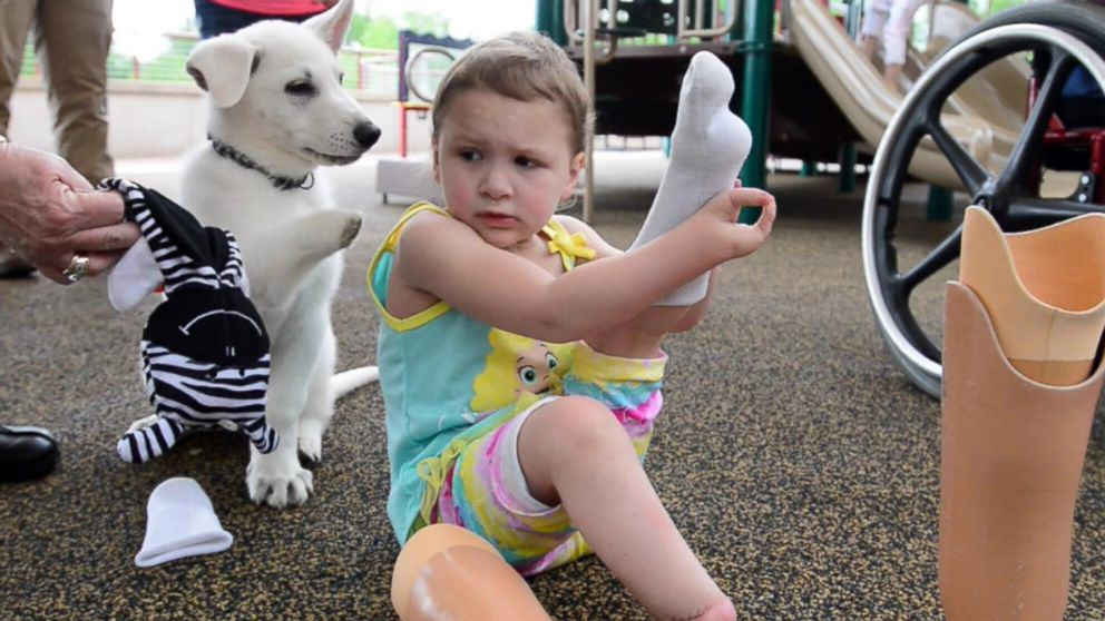 183 Tennessee Toddler Born Without Feet Gets Puppy Without a Paw