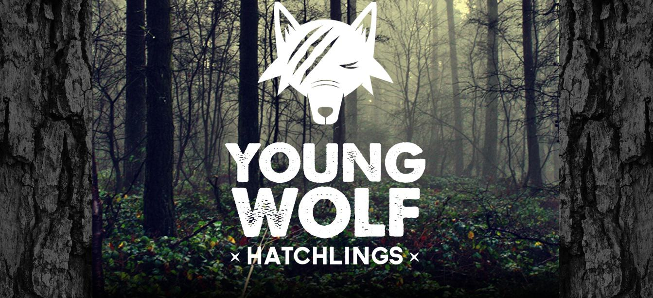 186 Young Wolf Hatchlings Release Their New Video For You Lovely You And Its Amazing