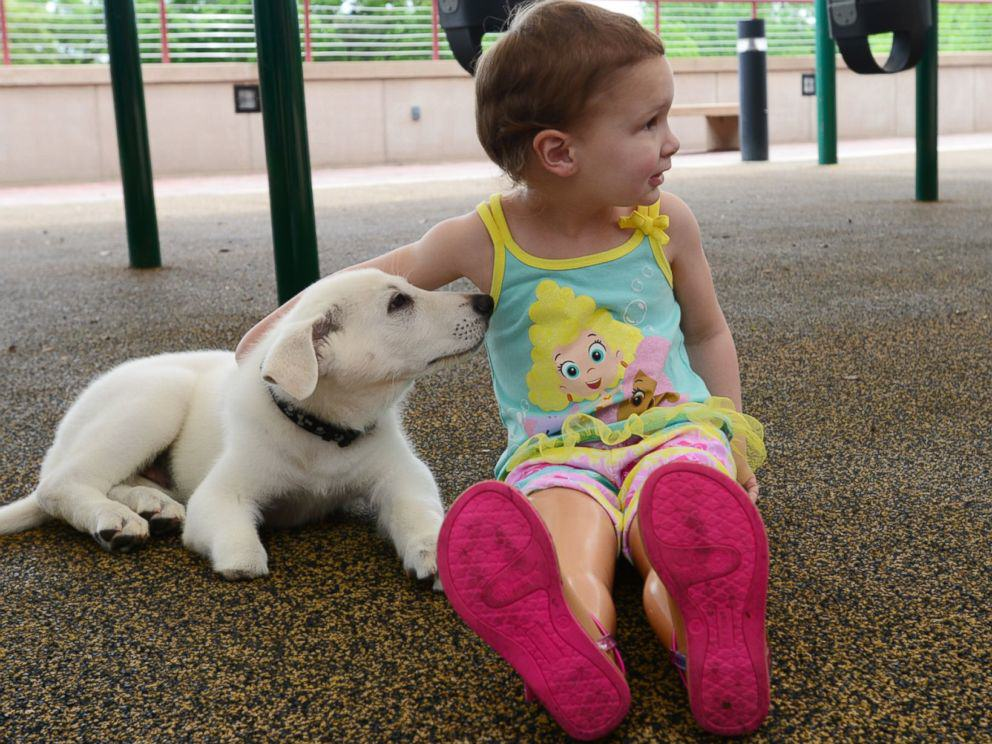 29 Tennessee Toddler Born Without Feet Gets Puppy Without a Paw