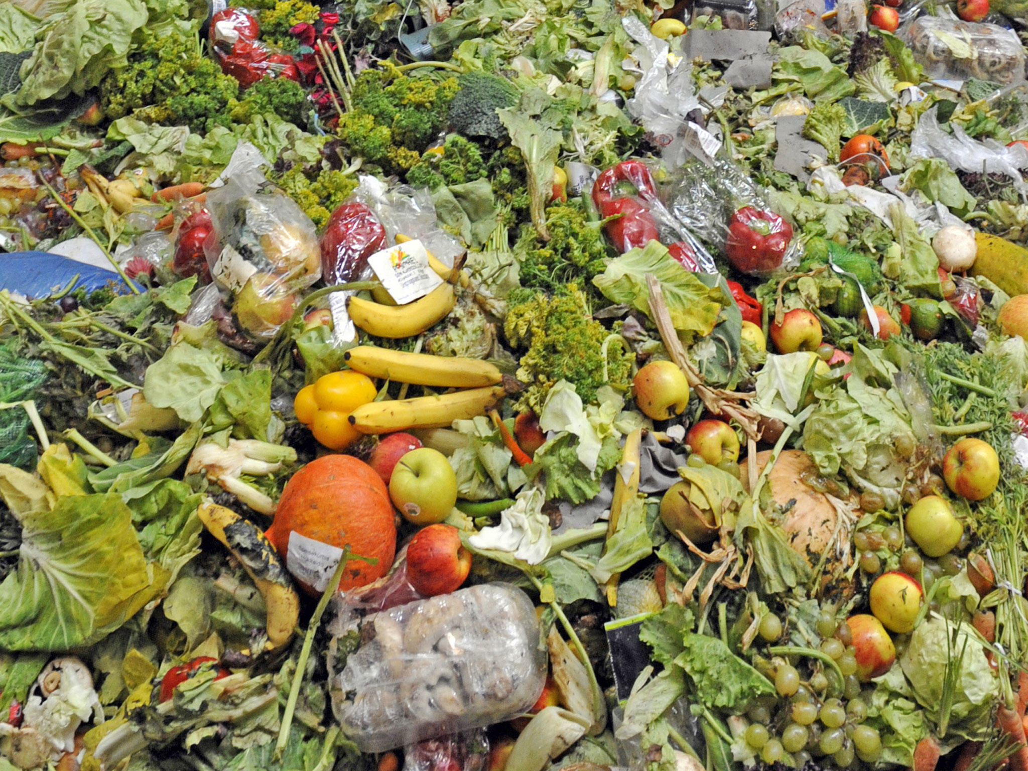 foodwaste blog Sign Our Petition To Force Supermarkets To Donate Unsold Food