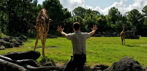 Screen Shot 2015 06 25 at 10.27.18 Zookeepers Love Jurassic Worlds Chris Pratt