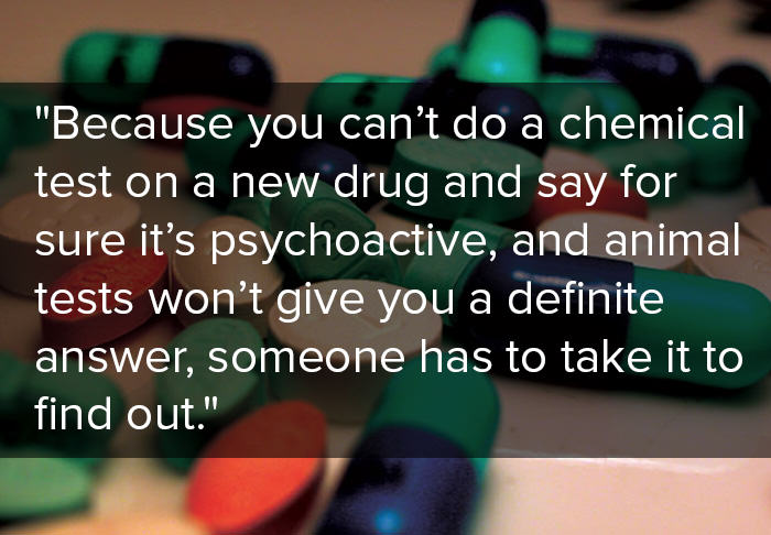 animalimage This Is What Drug Experts Think Of The Ban On Legal Highs