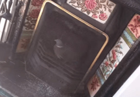 Man Finds Pigeon In Chimney, Pigeon Is A Lad, Man Gets Totally Embarrassed pigeon web 1