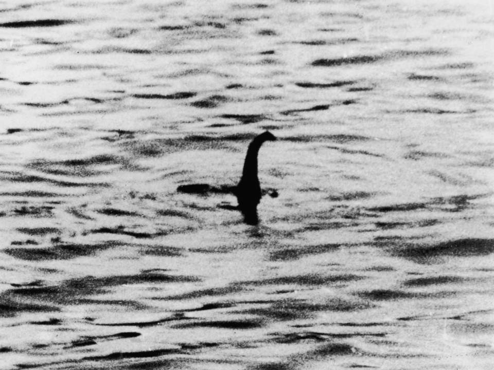 3422579 1 960x720 The Loch Ness Monster Is Most Likely A Large Catfish