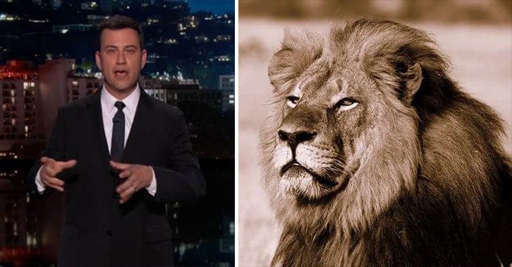 55b909f3840c1 Disgusting Tragedy Of Cecil The Lion Brings Jimmy Kimmel Close To Tears