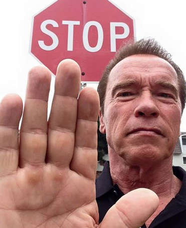 Arnold Schwarzenegger Gives His Verdict On Those Who Kill Big Cats 55ba1266c02e2