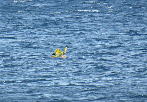floating baby web Dramatic Moment Baby Who Floated Half A Mile Out To Sea Is Rescued