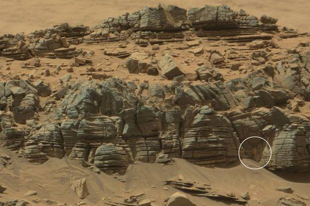 HxDnNWavs NASA Spot Something Crab Like On Mars And People Are Going Mental