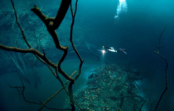 Diver Discovers Incredible Underwater River In Mexico UNILAD diver47