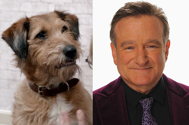 UNILAD rwaa7 Ten Facts You Probably Didnt Know About The Late, Great, Robin Williams
