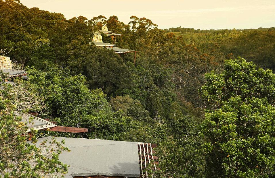 gft5beJTq This Treetop Lodge In South Africa Is The Only Place I Want To Be, Ever