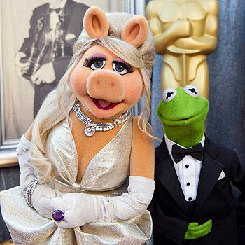 od8oGbzrZ Kermit The Frog And Miss Piggy Have Split Up, Apparently