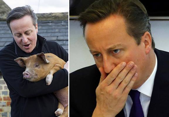 12029182 10153080115946631 1534001378 n David Cameron Stays Silent As Pig Gate Continues On Social Media