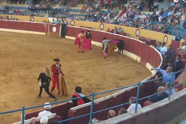 Swedish porn star jumps into bullfighting ring to comfort wounded animal PETA Video Of Swedish Porn Star Jumping Into Bullfighting Ring To Comfort Wounded Bull