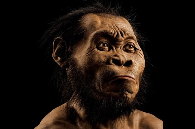 UNILAD 01 ngm 1015 MM8345 mystery man mark thiessen4 Huge Discovery As New Species Of Human Found In South Africa