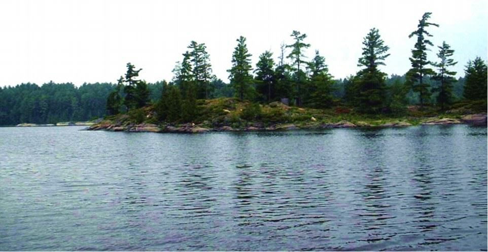 UNILAD Deer Bay French River Island 26 You Can Literally Buy These Private Islands For Less Than £250K