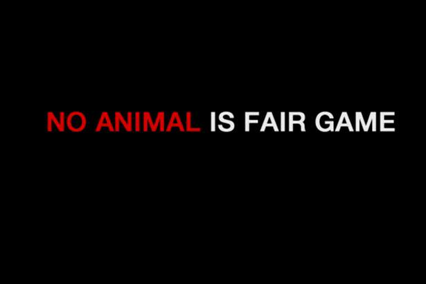 UNILAD anti hunting campaign 284648 Hard Hitting Anti Hunting Video Campaign Replaces Cecil The Lion With Dog