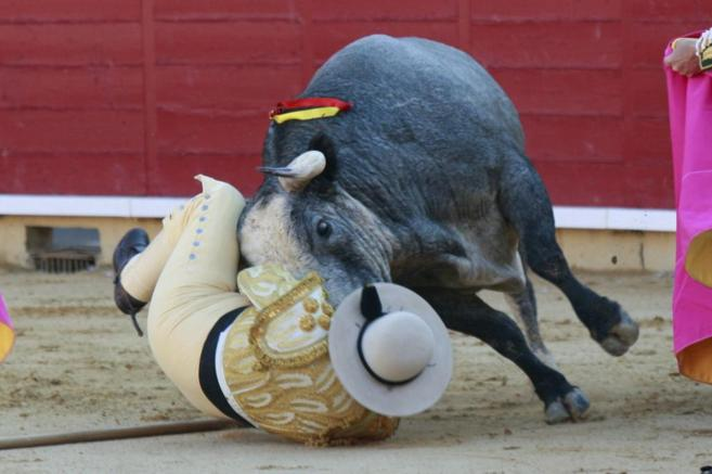 Shocking Video Shows Moment Spanish Bullfighter Was Gored In The Testicles UNILAD bull gore4