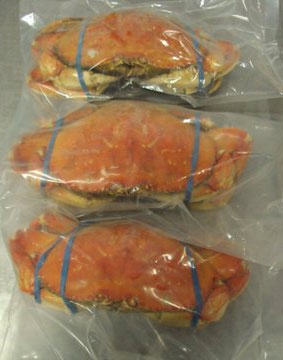 Supermarket In Britain Shrink Wrapping Crabs While Theyre Still Alive UNILAD frozen in bag Crab 02876114