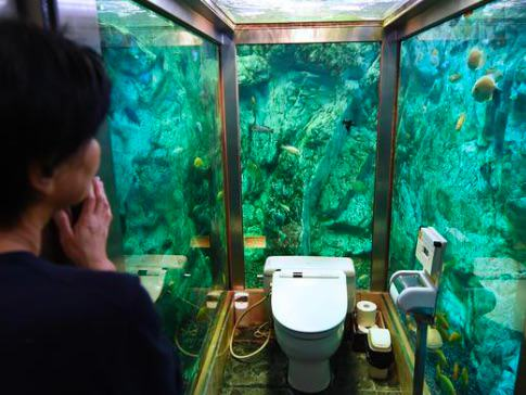 UNILAD LOO823621 Its World Toilet Day, So Herere Ten You Wont Forget In A Hurry