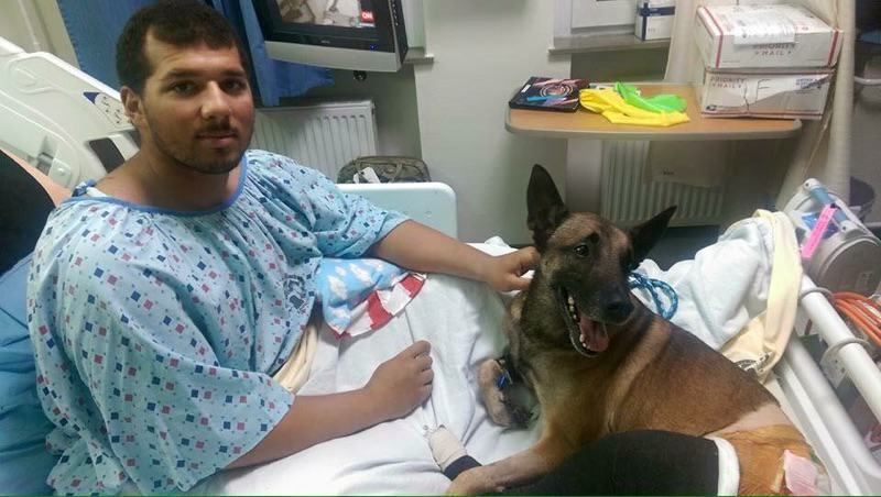 fb 1 Soldier And His Dog Injured By Bomb Treated Side By Side In Hospital