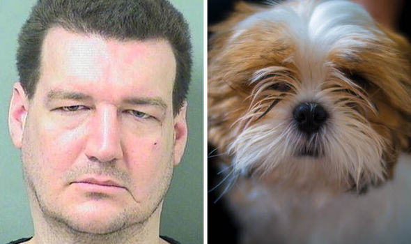 Six Crazy Floridian Moments From 2015 man dog