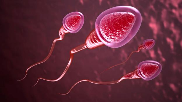 p01dn75d New Contraceptive Method Allows Men To Turn Sperm On And Off