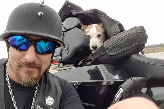 012301230aaz 676x450 Biker Rescues Pup Left For Dead On Highway, Makes Him 'Co Pilot'