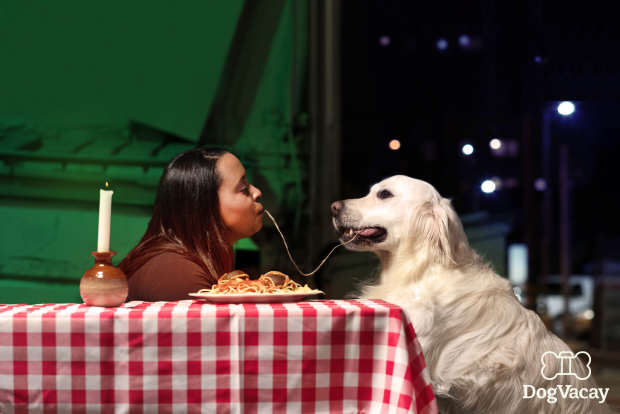 Dogs Recreate Famous Romantic Film Scenes For Valentines Day dogs recreate movie scenes lady and the tramp