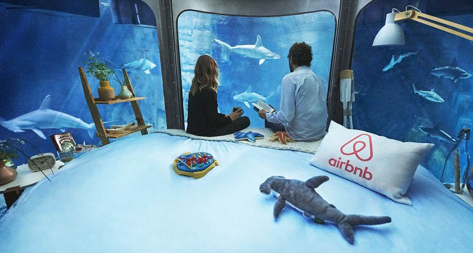 Airbnb Launches First Underwater Bedroom And It Looks F*cking Awesome 32A29F6300000578 3513560 The opportunity which is being offered on Airbnb aims to teach p a 10 1459244318050