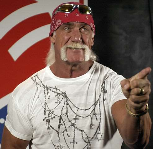 Hulk Hogan Awarded Insane Amount Of Money In Sex Tape Case 493px Hulk Hogan