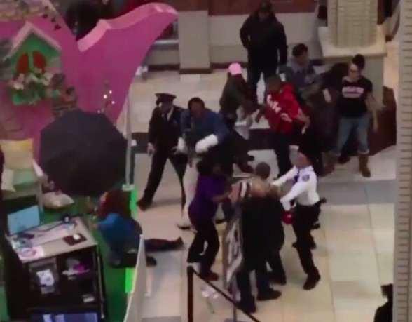 bunny2 Video Shows Brutal Brawl Between Easter Bunny And Shoppers