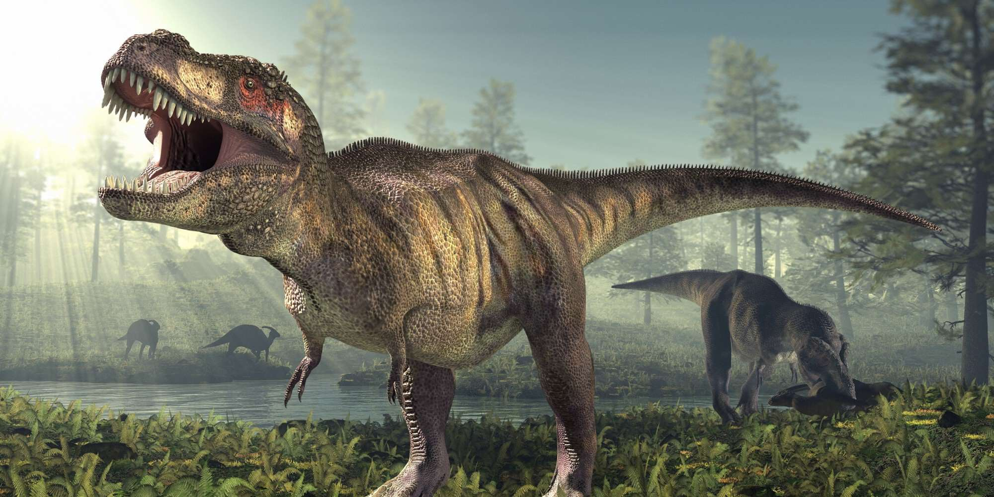 dino44 This Newly Discovered Dinosaur Gives Us Insight Into Origins Of T Rex