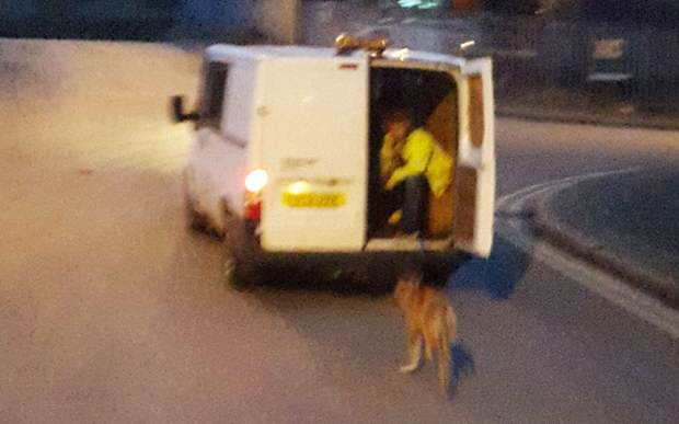 rspca1 Do You Know These Absolute Bastards Who Dragged A Dog Behind A Van?