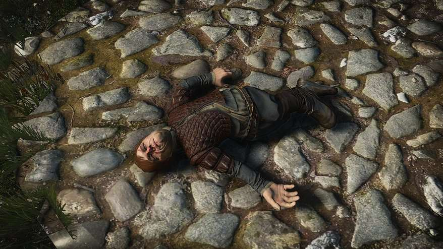 tyrion witcher Eleven Great Videogame Easter Eggs From 2014/15