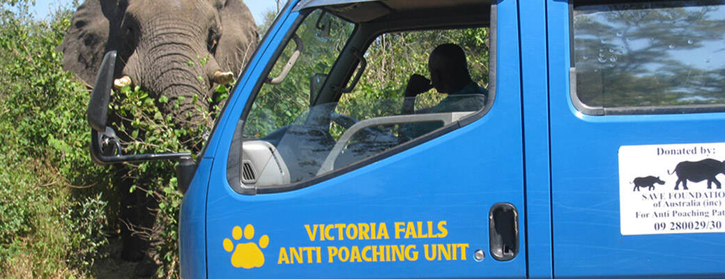 victoria falls anti poaching unit 01 Its Been A Great Year For This Anti Poaching Unit