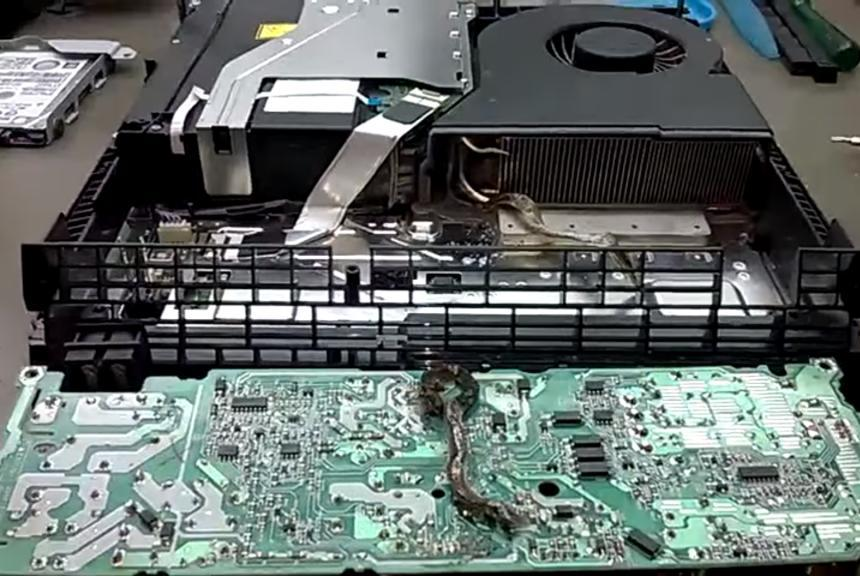 Electrician finds dead snake in malfunctioning PlayStation 4 Electrician Finds Worst Thing Imaginable Inside PlayStation 4