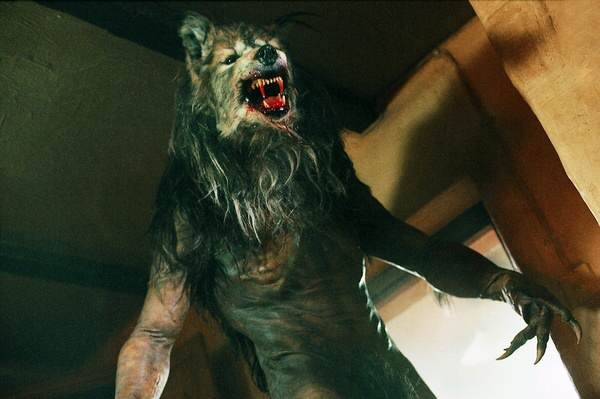 dog soldiers 1311 Locals In Hull Organise Werewolf Hunt After Spotting Half Dog, Half Man Creature