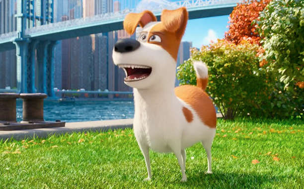 secret life of pets The Secret Life Of Pets: Silly Fun But Far From Purr Fection