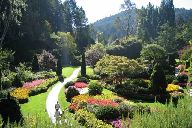 Butchart gardens 640x426 People Whove Come Back From Dead Reveal Whats On Other Side