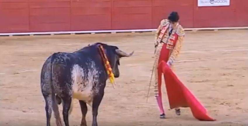 bull 1 Global Outrage As Story Of Bull Who Killed Matador Reaches New Low