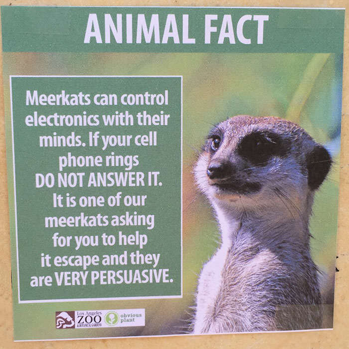 funny animal facts fake los angeles zoo obvious plant 4 5776744320022  700 Prankster Brilliantly Trolls Zoo With Made Up Animal Facts