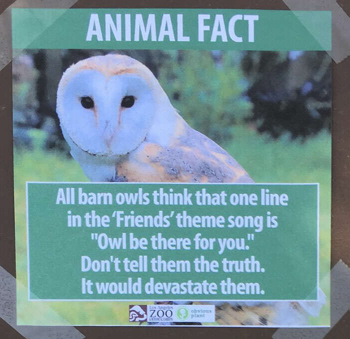 funny animal facts fake los angeles zoo obvious plant 8 5776744fca78e  700 Prankster Brilliantly Trolls Zoo With Made Up Animal Facts