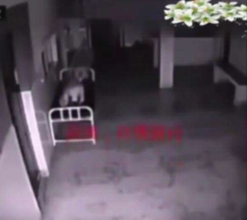 vid 3 6 Eerie Hospital Footage May Prove We All Have Souls