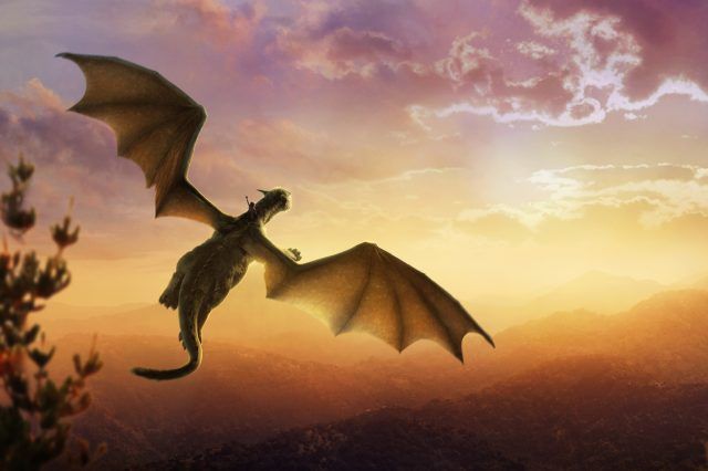 Pete's Dragon: Here Be Magic, Wonders And, Oh Of Course, A Dragon Petes Dragon 2016 Textless Banner 640x426