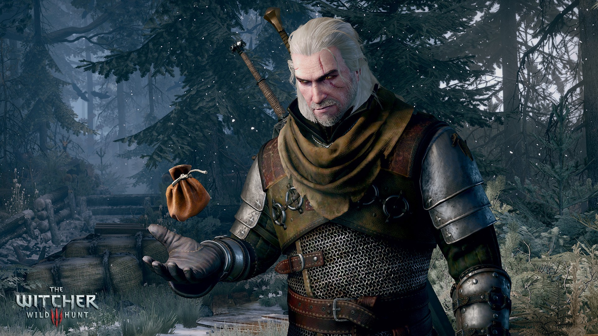 Witcher 3 Devs Reveal Profits For First Half Of 2016 witcher 3 gone gold
